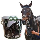 Elektrolyte Pferd I Aminosäuren komplex I Mineralien Salze Vitamine I 100% rein I Mineralstoffe & Spurenelemente I nach Durchfall Schwitzen Fieber I Amino Energy Booster Pferde 2,5kg