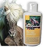 Teebaumöl Pferdeshampoo I Hundeshampoo I Pflegeshampoo Teebaum-Öl Juckreiz I Shampoo für Pferde empfindlicher Haut I Fellglanz I leichte Kämmbarkeit reinigt juckende Haut Schweif Mähne 500ml