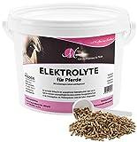MIGOCKI Tierernährung M-Premium ELEKTROLYTE – 1,5 kg – Ergänzungsfuttermittel für Pferde – Schneller Ausgleich bei Elektrolytverlust – Pellets (1,5 kg Eimer)