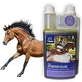 Vitamine & Spurenelemente I Mineralfutter für Pferde Liquid I B-Vitamine I Vitamin E B-komplex B12 Eisen Zink Selen I Mineralien I Immunsystem stärken I Nährstoff-Mangel Oldie Stuten Pferd 1L
